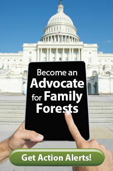 become a family forest advocate