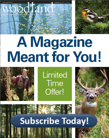 a magazien meant for you subscribe today