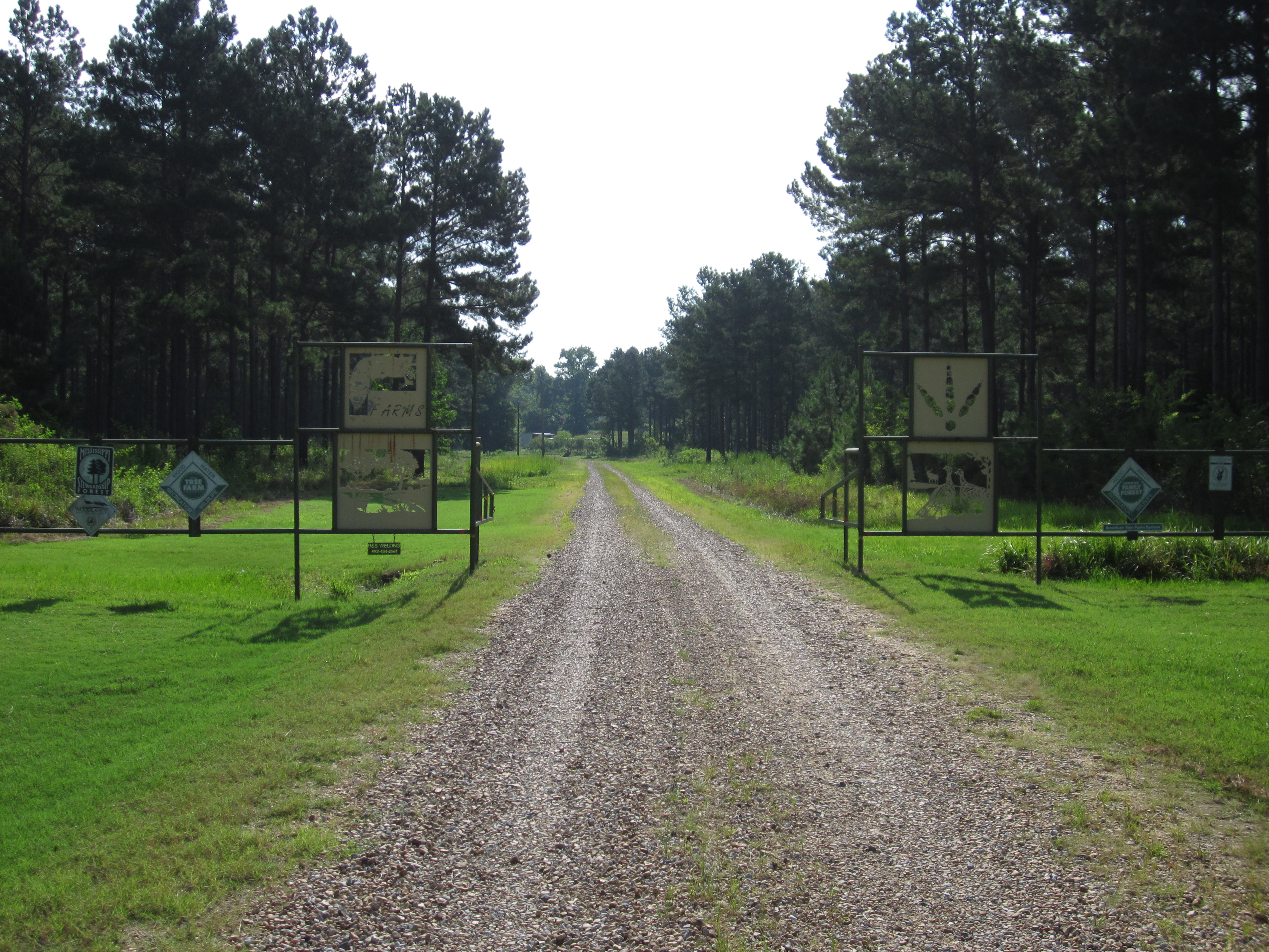 Mississippi monroe county becker - I Feel That Mr Watkins Is An Outstanding Tree Farmer Because He Manages His Timber Wildlife And The Habitat In Which They Live To Better The Quality Of